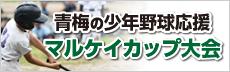 青梅の少年野球応援 マルケイカップ大会